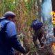 Antisipasi Kebakaran Hutan dan Lahan, BPBD Berencana Dirikan Pos Pantau